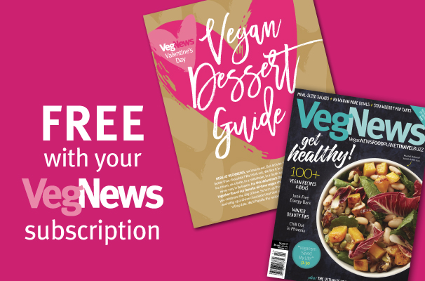 FREE Vegan dessert guide graphic 2