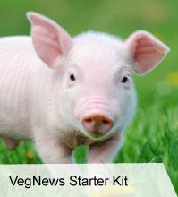 VegNews.VegNewsStarterKit 2