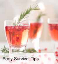 Holiday Survival Tips 2