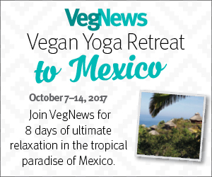 VegNewsVacations.YogaRetreat.300x250 2