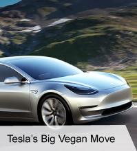 VegNews.TeslasBigVeganMove